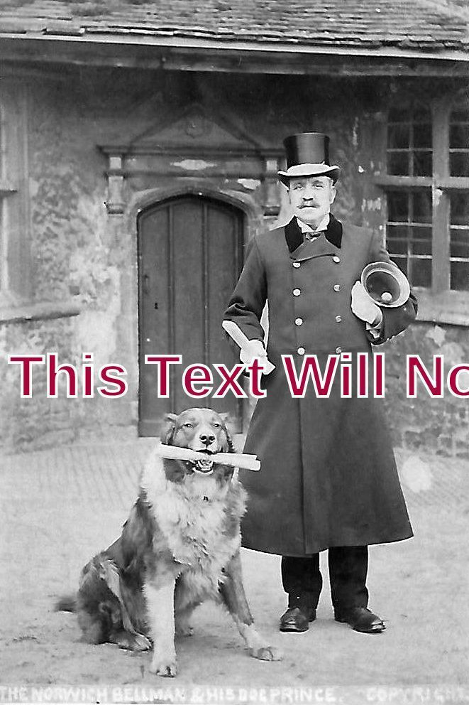 NF 1018 - Norwich Bellman & His Dog 'Prince', Norfolk c1909 - 6x4 Photo